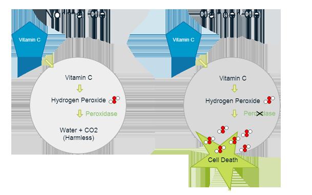 vitamin-c-cancer-hydrogen-peroxide