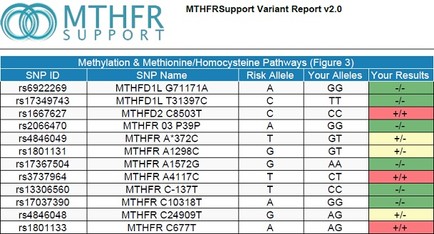 MTHFR, methylation testing