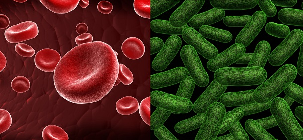 Ozone therapy, red blood cells & bacteria