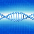 Methylation & The MTHFR Gene